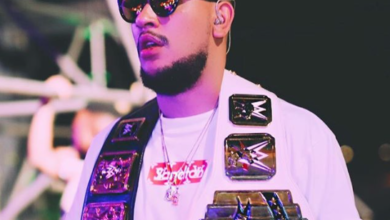 Here Is How Much AKA Made From Shows In 2017